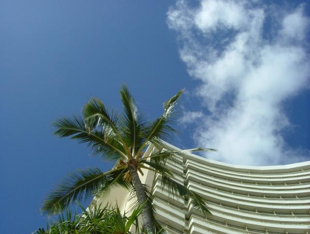ANAマイルを貯めればハワイ旅行に無料で行ける