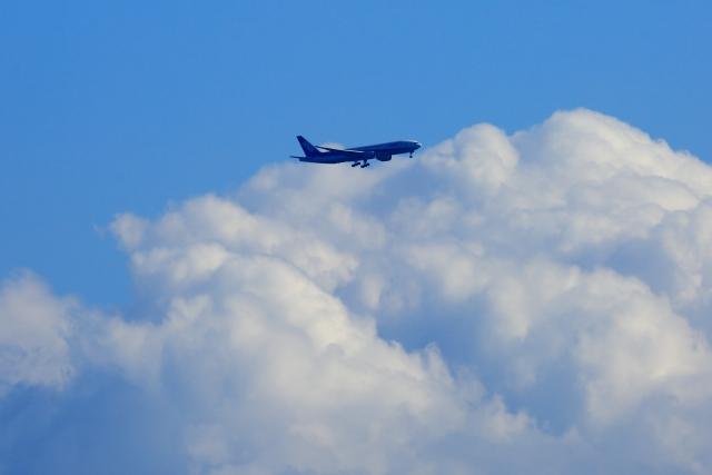 ANAプレミアムクラスで快適な空の旅