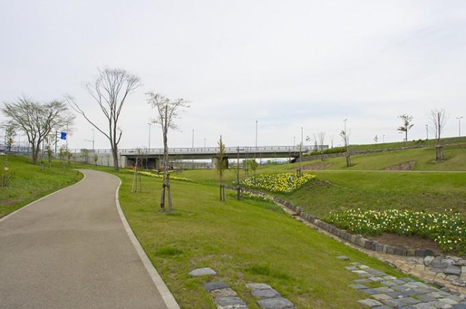 公園と道路