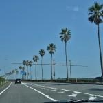 ANA SFC修行番外編-2:地元民も行く宮崎市内のグルメ&観光スポット