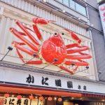 わなかのたこ焼き&だるまの串カツ&551蓬莱の叉焼まんで食い倒れ王道を行く大阪マイル旅