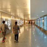 JAL JGC修行1-13:ビジネスクラスで帰国!台北→成田キャセイパシフィック航空の座席と機内食