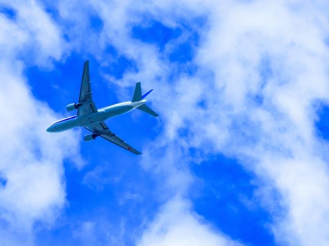 飛行機でマイル旅