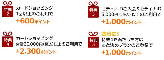 セディナカードJiyuda入会キャンペーンStep3-1